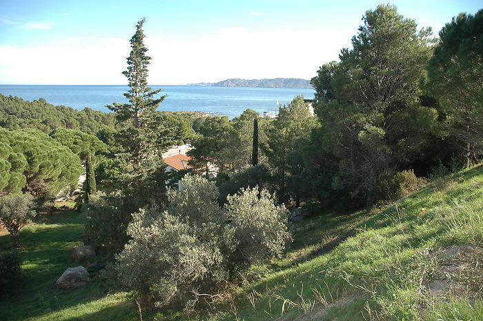 Fully urbanized plots with sea views in Grifeu, Llançà